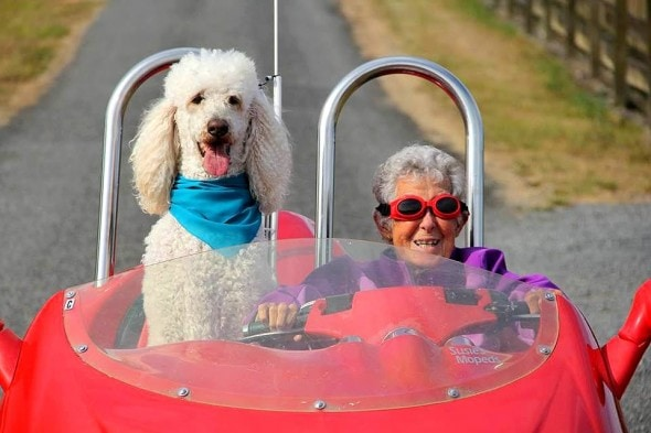 10-12-16-woman-skips-cancer-treatment-to-travel-with-dog