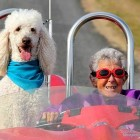 Elderly Woman Skips Cancer Treatment to Spend Her Final Days Traveling With Her Dog