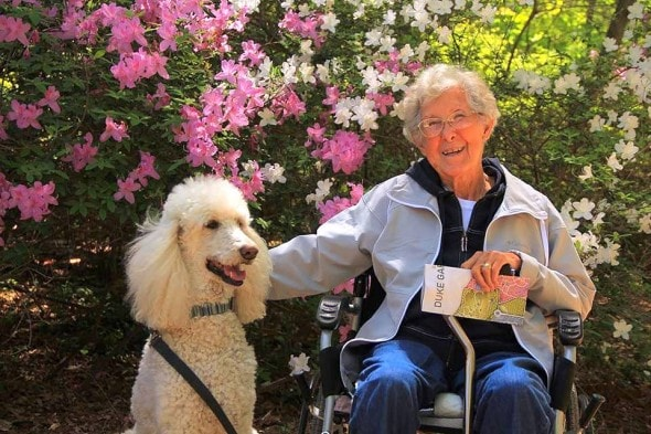10-12-16-woman-skips-cancer-treatment-to-travel-with-dog5