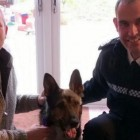 UK Petition for Finn's Law Gets 100,000 Signatures after Police Dog Assaulted
