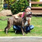 An Open Letter from a Badly Abused Pit Bull to His Future Human