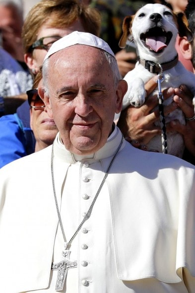 10-6-16-pope-francis-photobombed-by-the-most-jubilant-dog1