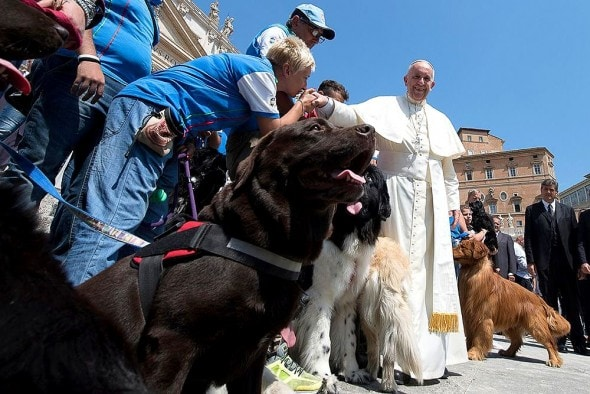 10-6-16-pope-francis-photobombed-by-the-most-jubilant-dog2