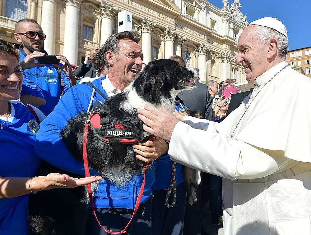 Best Wet Dog Food >> Pope Francis Photobombed by the Most Jubilant Dog - LIFE WITH DOGS