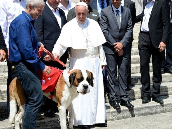 10-6-16-pope-francis-photobombed-by-the-most-jubilant-dog6