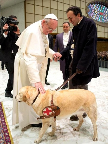 10-6-16-pope-francis-photobombed-by-the-most-jubilant-dog8