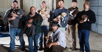 Groom or Groomer?! MI Men Adopt Stray Dog & Pups at Out-of-State Bachelor Party