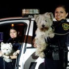 Hooray for the Houston PD! The dogs' owner credits the officers' quick action, as well as that of another good Samaritan, for saving her dogs' lives.
