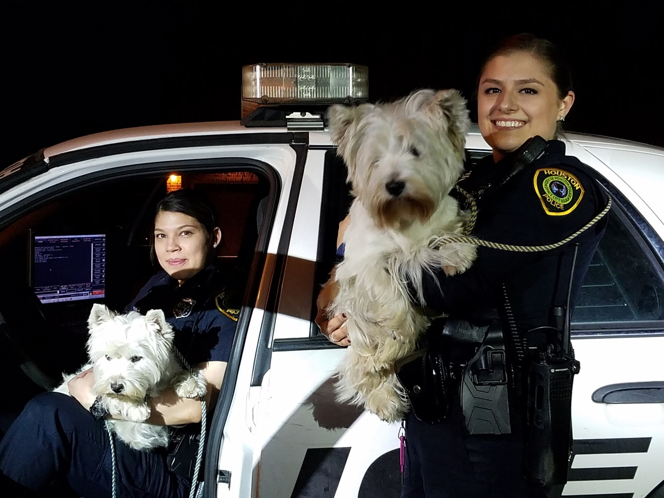 Houston Cops Wrangle Westies on an Unscheduled Walk