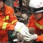 Firefighters Save a Mom and Her Nine Pups from a Collapsed House in China