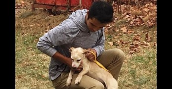 Teen Volunteers with Mom at Rescue and Has Abused and Neglected Dog Change His Life