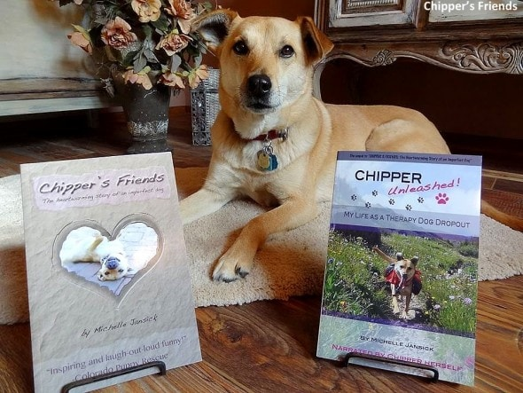 11-18-16-a-real-dogs-purpose-chipper6
