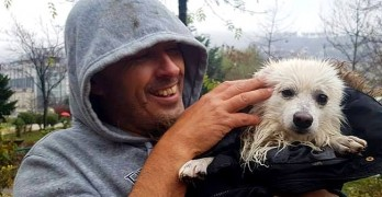 11-25-16-bosnian-taxi-driver-heroically-saves-dog-from-being-drown-in-a-river1