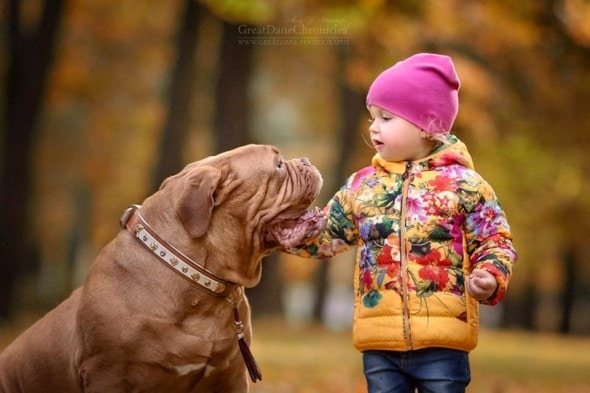 11-25-16-little-kids-and-their-big-dogs0