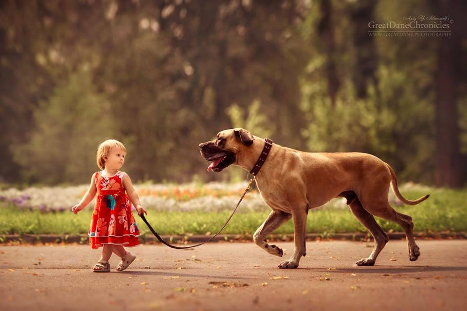 Truly Magical Photos Of Little Kids And Their Big Dogs - Tiny children and their huge dogs photographed in adorable portraits by andy seliverstoff