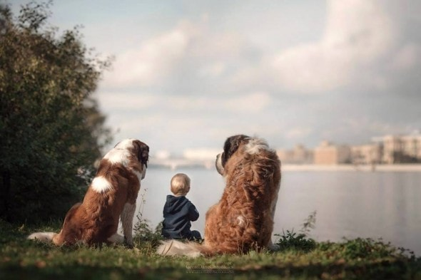 11-25-16-little-kids-and-their-big-dogs15