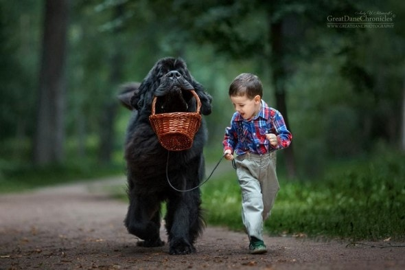 11-25-16-little-kids-and-their-big-dogs2