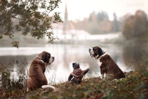11-25-16-little-kids-and-their-big-dogs20