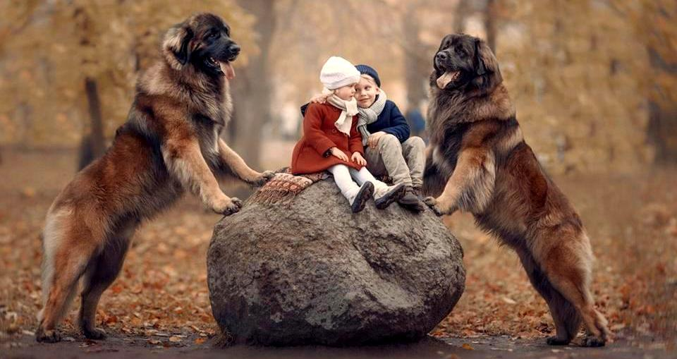 36 Truly Magical Photos of Little Kids and Their Big Dogs