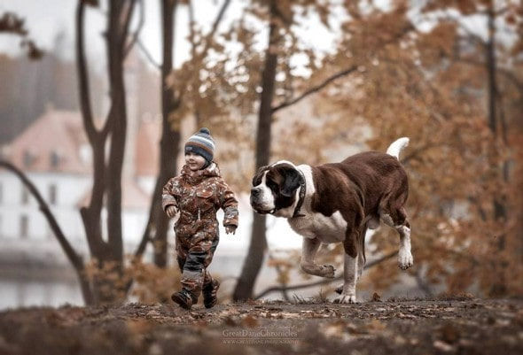 11-25-16-little-kids-and-their-big-dogs8