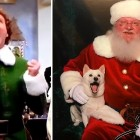 "Dog Has the Most Incredible ""Buddy the Elf"" Moment When Her Family Takes Her to Meet Santa"