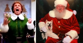 11-26-16-dog-has-buddy-the-elf-moment-when-her-parents-take-her-to-meet-santa5
