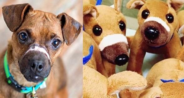11-27-16-justice-scars-stuffed-animal1