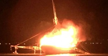 A Dog and Four People Are Saved After a Boat Explosion off Georgia Coast