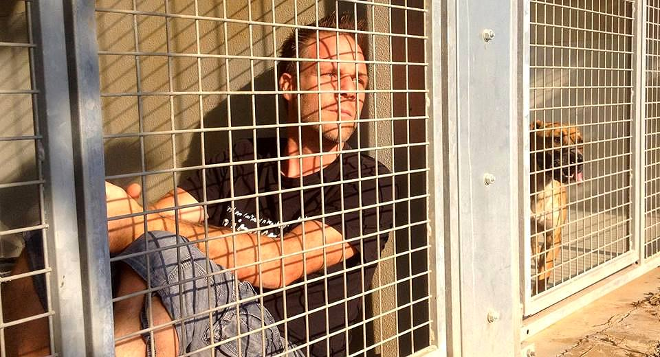 Man Will Live in Shelter Kennel Until All of Its Animals Have Been Adopted
