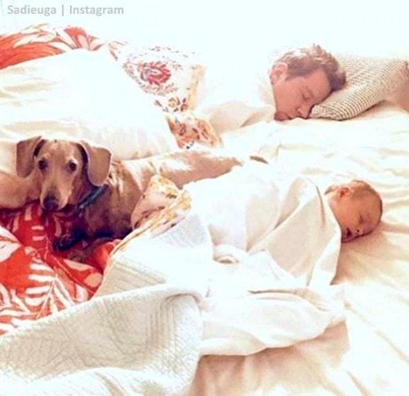 11-8-16-paraplegic-senior-dog-adopts-his-familys-baby-teaches-him-to-crawl4