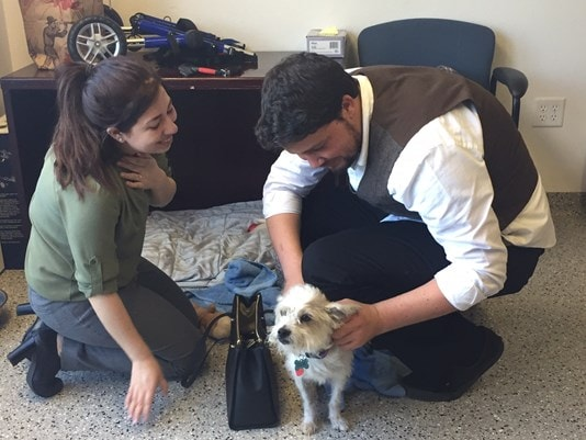 It was a happy, tearful reunion for Patches and his owners. Photo: Sacbee.com