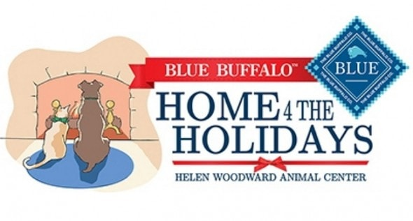 homefortheholidaysonline-ec1cf12c