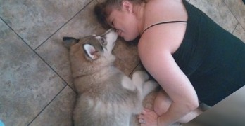 Family That Returned Husky Given New Dog