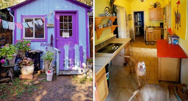 Cottages, Not Cages! Check out Oregon's Luvable Dog Rescue