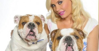 Ice-T & Coco Austin Mourn the Loss of their Beloved Bulldog, Spartacus