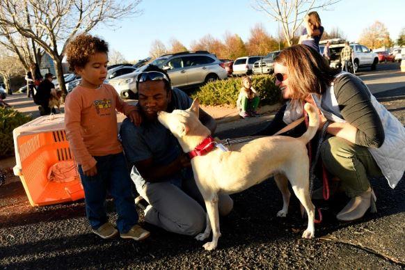 Lilah meets her new foster family. Photo: Helen H. Richardson/The Denver Post