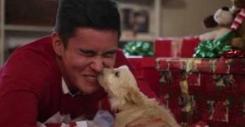 Will Jay Celebrates the Joy of Dog Adoption with Musical PSA