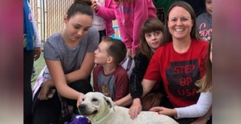 Step Up USA Makes and Donates 100 Beds to Dog Shelter