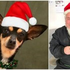 UPDATE:  Christmas Carol Has Been Adopted!