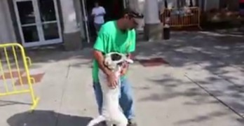 Dog Dad Has the Sweetest Reunion With His Missing Baby at a Pet Adoption Event
