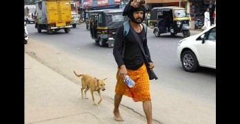 Dog Walks Over 350 Miles to Keep a Man on a Pilgrimage Company