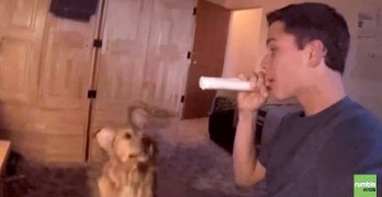"Dog Has Hilarious Reaction to Her Human ""Eating"" Her Bone"