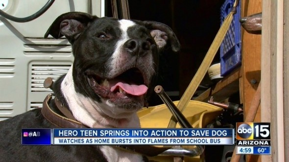 12-6-16-teen-saves-dog-from-fire