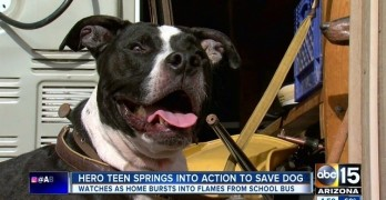 Heroic Teen Braves House Fire to Save His Beloved Family Dog
