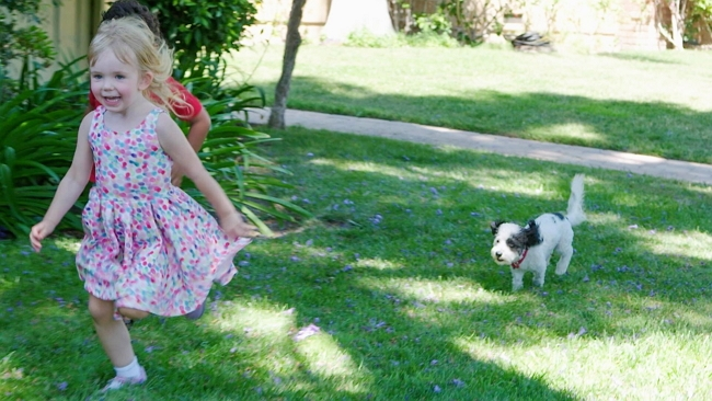 TurfMutt to the Rescue with Education About Your Yard