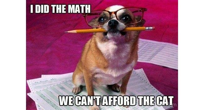 Laugh Alert: 2016's Top Dog Memes That Were Total Favs