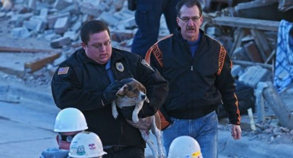 It took firefighters about 20 minutes to extract Molly from the rubble. Photo: Joe Ahlquist/Argus Leader