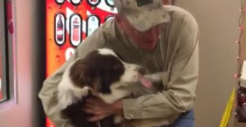 Dog on Shelter Euth List Reunites with Dad Seven Months After Going Missing!