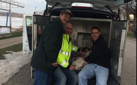 Michigan Firefighters Rescue Dog From Icy White Lake!