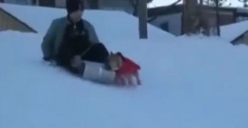 When your dog wants to sled more than you do…!